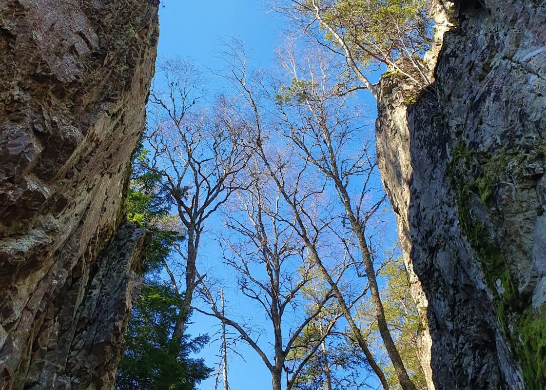 Bore Kulle ligger i närheten av Kroppefjäll Bed & Breakfast, Dals Rostock, Dalsland och är ett perfekt besöksmål att vandra till.