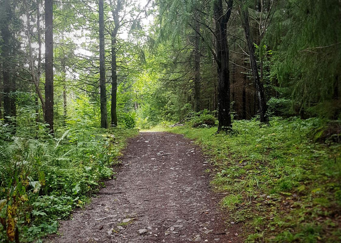 Pilgrimsleden är en härlig vandring som ligger i närheten av Kroppefjäll Bed & Breakfast, Dals Rostock, Mellerud, Dalsland.