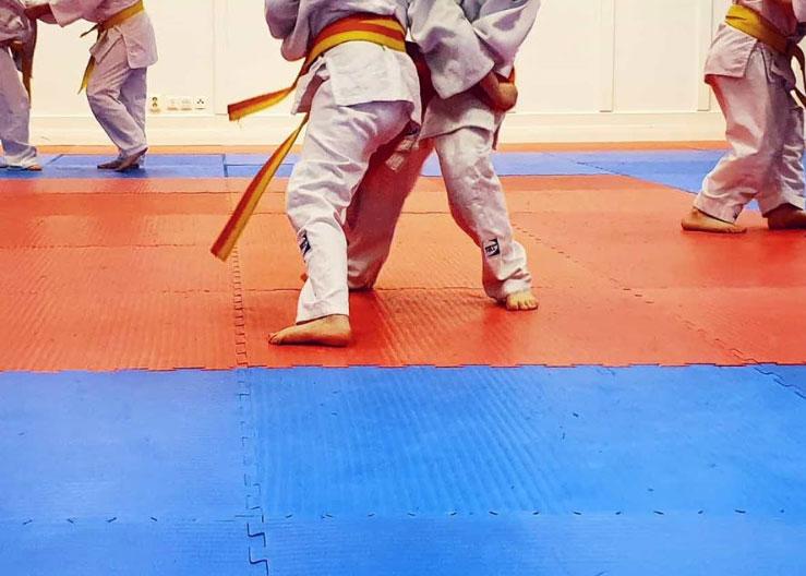 På Kroppefjäll anordnar Kroppefjäll IF judoträningar. Dals Rostock, Dalsland.