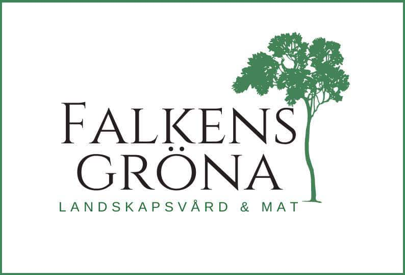 Falkens-Gröna-copy